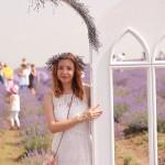 LavenderFest