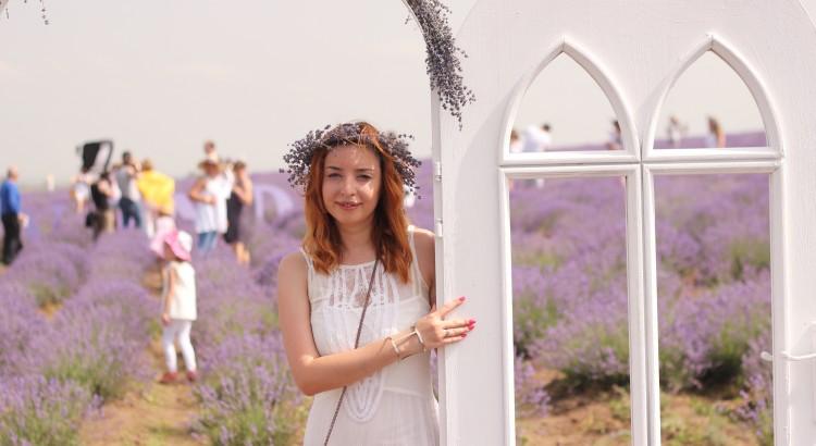 LavenderFest 2016: povestea din campul de lavanda